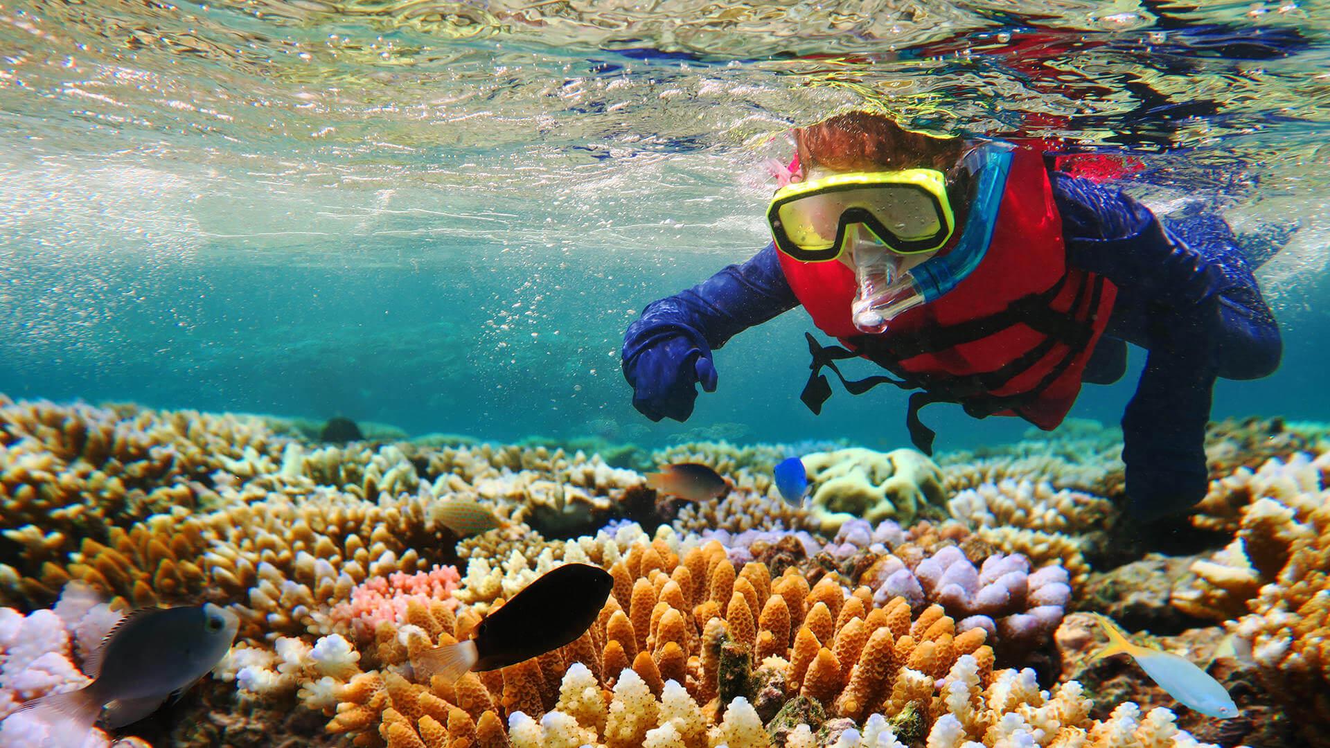 Grande Barreira de Corais com Crianças